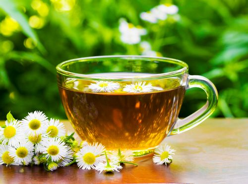 Chamomile Tea For Insomnia - What is it and How to Use It For Sleep